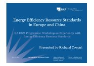 Chinese Experiences - IEA Demand Side Management Programme