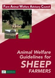Animal Welfare Guidelines for Sheep Farmers - Irish Country Meats