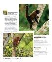 Monos del Ecuador - Abordo.com.ec - Page 3