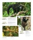 Monos del Ecuador - Abordo.com.ec - Page 5