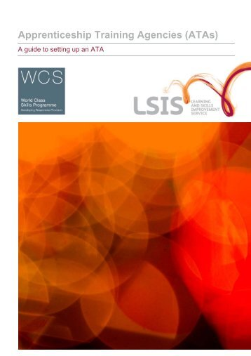 10-LSIS-ATA-Set-Up-Guid-Apr