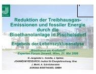 Download - Netzwerk Biotreibstoffe