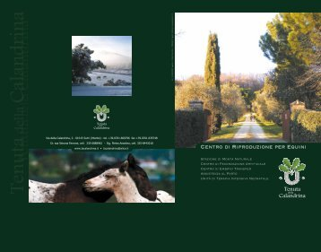 Centro di Riproduzione per Equini - tenuta della calandrina