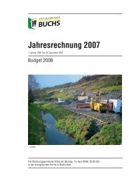 Jahresrechnung 2007 - Ortsgemeinde Buchs