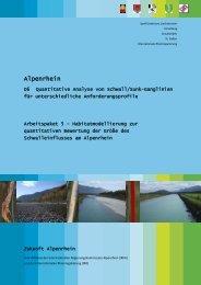 Arbeitspaket 5 - Zukunft Alpenrhein