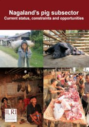 2. Nagaland, livelihoods and the pig sub-sector - CGSpace Home ...