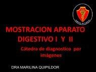 Mostracion DIGESTIVO I y II - FMV