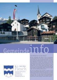 Jahresrechnung 2013 (PDF) - Gemeinde Fiesch