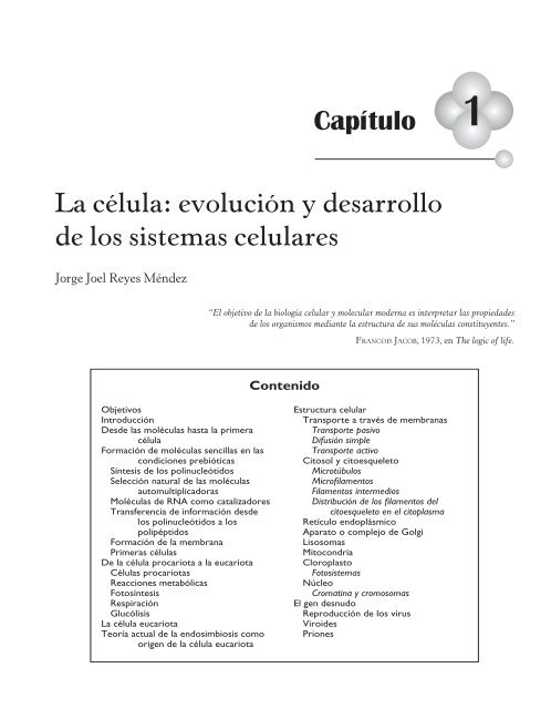 La Cã Lula Y Su Evoluciã N Biologãa Celular