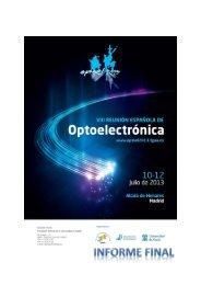 informe final de la reunión - OPTOEL 2013.