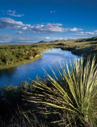 Gold West Country - Visit Montana