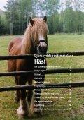 Djurskyddsbestämmelser Häst - Jordbruksverket - Page 2