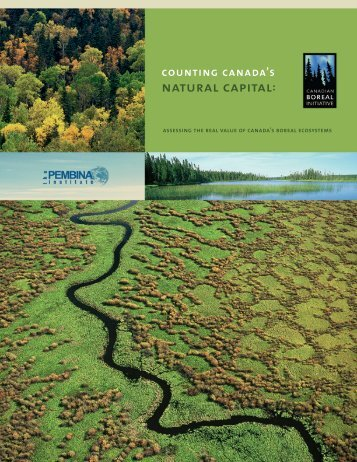 Counting Canada's Natural Capital: Assessing the Real Value