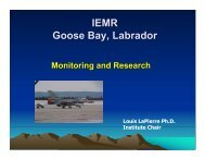 Presentation (PDF) - Institute for Environmental Monitoring and ...