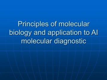Molecular diagnostic - Caribvet