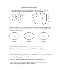 Diffusion & Osmosis Worksheet