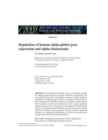Regulation of human alpha-globin gene expression ... - Funpec-RP