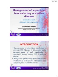 Management of superficial femoral artery occlusive ... - RM Solutions