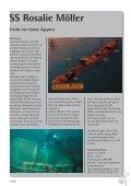 Seekrank in El Gouna - Tauchclub Triton - Bad Vilbel eV - Page 3