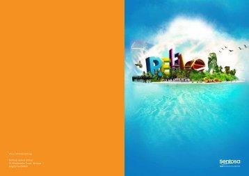 Financial Report - Sentosa Development Corporation