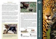 yaguarete 5 - Fundación de Historia Natural Félix de Azara