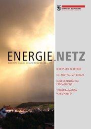 Energie.Netz 2011 Februar - Technische Betriebe Wil