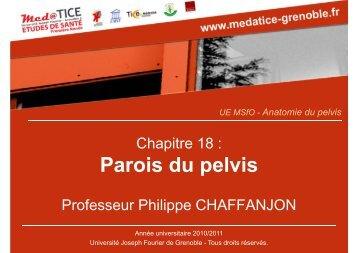 Parois du pelvis - Université Virtuelle Paris 5