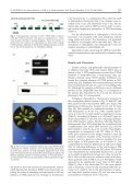 Photochemistry of PSII in CYP38 Arabidopsis thaliana Deletion Mutant - Page 3