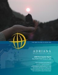 First Quarter Ended Jan 31, 2009 - Adriana Resources Inc.
