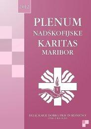 Plenumska knjiga NŠKM 2012 - Nadškofijska karitas Maribor