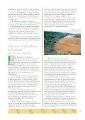 Folleto Lince+Natura - WWF - Page 5