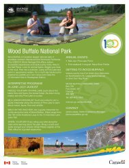 Wood Buffalo National Park - NWTT Travel Trade