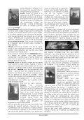 LE SEIGNEUR DES ANNEAUX - Page 2