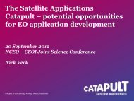 Application Development opportunities in the Catapult - NCEO ...