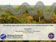 Estimating large-scale carbon fluxes from remotely-sensed biomass ...