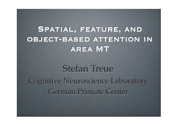 Spatial, feature, and object-based attention in area MT - The Swartz ...