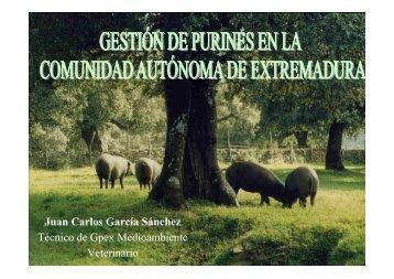 Juan Carlos. GPEX - Altercexa