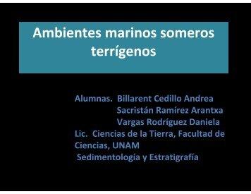 Ambientes marinos someros terrígenos