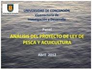 Presentación - Universidad de Concepción