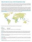 BAMBOU VILLAGE DE PHU AN - Equator Initiative - Page 2