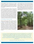 BAMBOU VILLAGE DE PHU AN - Equator Initiative - Page 7