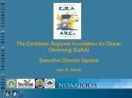 Executive D Report_CaRA_council_08 - UPRM
