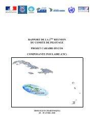 Rapport 2eme Comite Pilotage - Avr 2010.pdf - Caraïbe-HYCOS