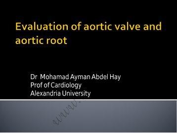Dr Mohamad Ayman Abdel Hay Prof of ... - cardioegypt2011