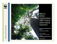 MRV for REDD+ implementation: WWF's local to global ongoing ...