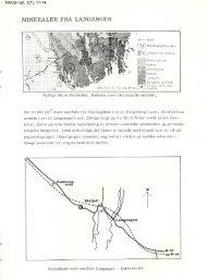 Mineraler fra Langangen pdf - NAGS
