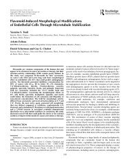Flavonoid-Induced Morphological Modifications of Endothelial Cells ...