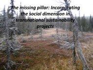 Soederstrom transnational projects 2008-11-03.pdf