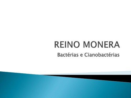 bacterias y cianobacterias