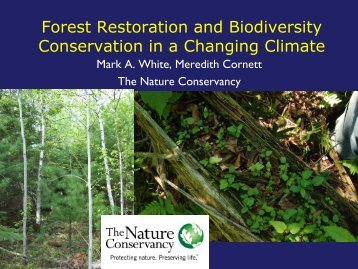 Forest Restoration and Biodiversity Conservation in a Changing ...